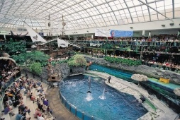 Dolphin Show & Santa Maria Ship, West Edmonton Mall - Photo Credit: Travel Alberta